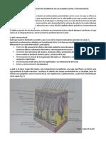 Descripción y Nomenclatura Elemental de Las Lesiones en Piel y Mucosa Bucal