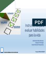 Presentacion Instrumentos HpV