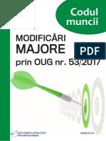 Raport Special Codul Muncii Oug53170816131232
