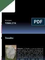 225323833-tonalita