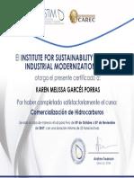 Certificado de Participaci n 2017-11-17