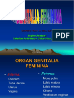 Kuliah 2 - Anatomi Sistem Reproduksi - Dr. Hasan Sp.ot