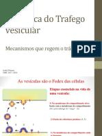 Aula 8 - vesículas.pdf