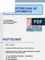 histo1an-epitheliums_revetement.ppt