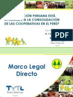 01-Torres-Torres-lara Legislac Peruana Consolidac Coop en El Peru
