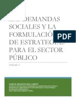 LAS DEMANDAS SOCIALES Y LA FORMULACIÓN DE ESTRATEGIAS PARA EL SECTOR PÚBLICO