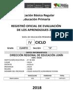 Registro Oficial de Evaluacion Primaria 2017 Final Tercer Grado Vvvv