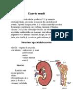 excretia_renala.doc