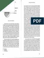 O Ensino da LI- Visões Contemporâneas 9.pdf