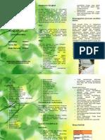 brosur IPB ( Institut Pertanian Bogor )