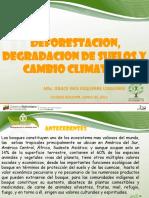 Deforestacion Degradacion de Suelos y Cambio Climatico 11