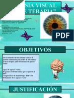Agnosia Visual Arte Terapa.pptx