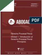 Procesal Penal. Unidad 1. Uncaus