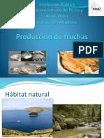 Presentacion Pisciculturaa en Bolivia