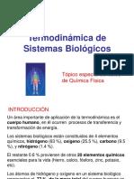biotermo_2017.ppt