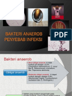 Bakteri anaerob penyebab infeksi.pptx