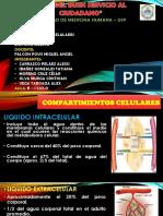 COMPARTIMENTOS CELULARES (2)