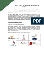 Manual Visual Basic Studio 2008