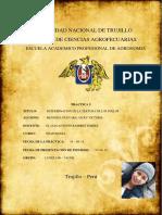 Textura-de-suelos-Mendoza-Guevara-Vicky-Edafolofia-Grupo-b.docx