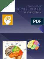 Clase 1 Introduccion a La Neurociencia