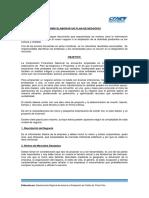 AE-PLAN-DE-NEGOCIOS_CFN.pdf
