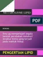 11 Metabolisme Lipid