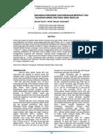 196-13-333-1-10-20170616.pdf