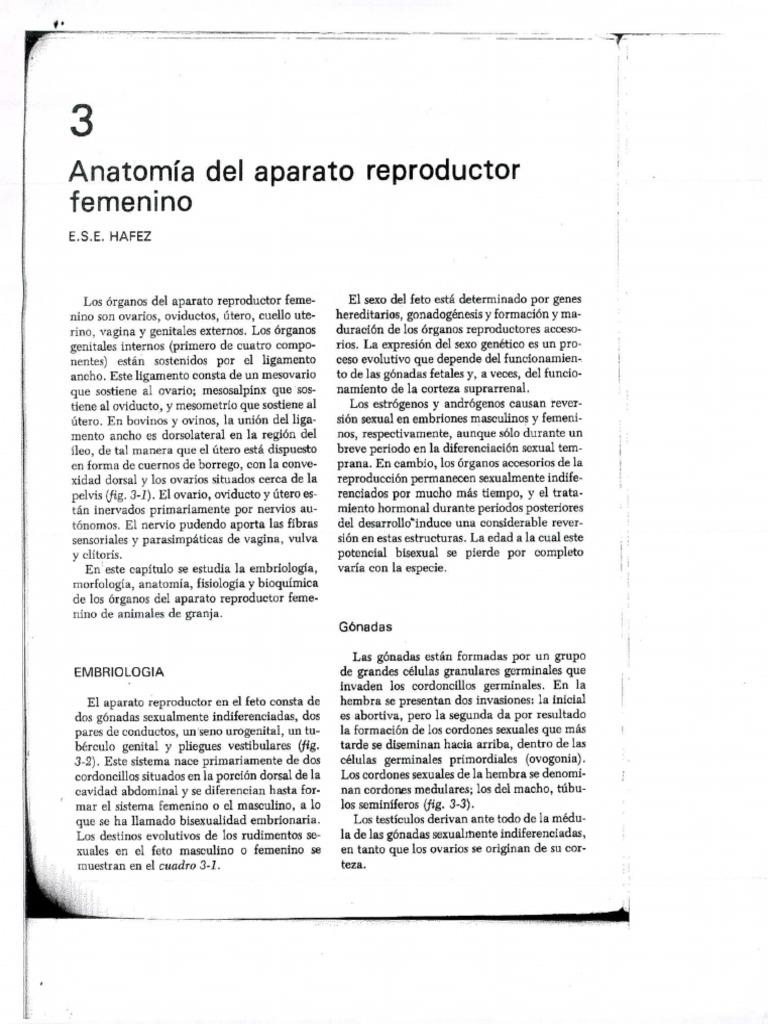 Contemporáneo La Anatomía De Los Abusos Ideas - Anatomía de Las ...