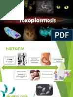 toxoplasmosis-170520175429