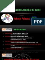 Seminario Cancer Biología