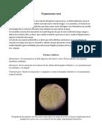 Reporte de Lab - Protozoarios (1)