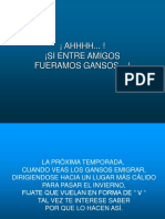 VuelodeGansos-Trabajo Equipo.ppt