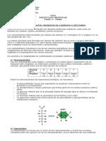 Guía Moléculas Orgánicas- Carbohidratos