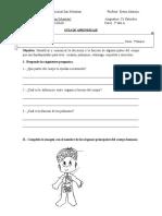 Guía Partes Del Cuerpo 2 A