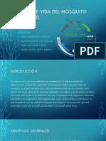 Diapositivas Del Proyecto de Biología