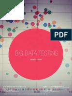 Big Data Testing Whitepaper