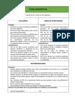 Ficha Descriptiva Ejemplo Internet