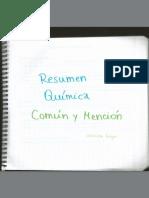 Resumen Qui_mica Comu_n y Mencio_n