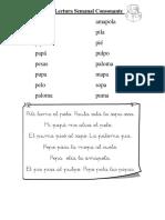 Control Lectura Semanal Consonante P