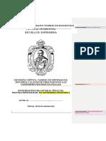 Protocolo de Informe EBE Segunda Especialidad1
