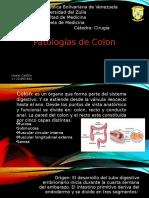HACM Colon