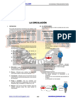81738288-La-Circulacion-Economica.pdf