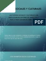Fuerzas Sociales y Culturales