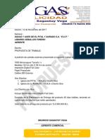Propuesta de Trabajo 2017 .pdf