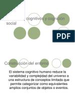Clase 3 Esquemas Cognitivos