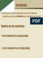 BACTERIOLOGIA -Metabolismo