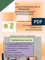 Bacterias Que Se Transmiten Por Vía Respiratoria