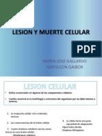 Lesion Celular y muerte