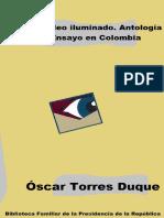 Ensayo en Colombia.pdf
