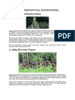 10 SUKU PRIMITIF DI INDONESIA INI TERANCAM PUNAH.docx